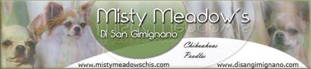 www-mistymeadowschis-com_